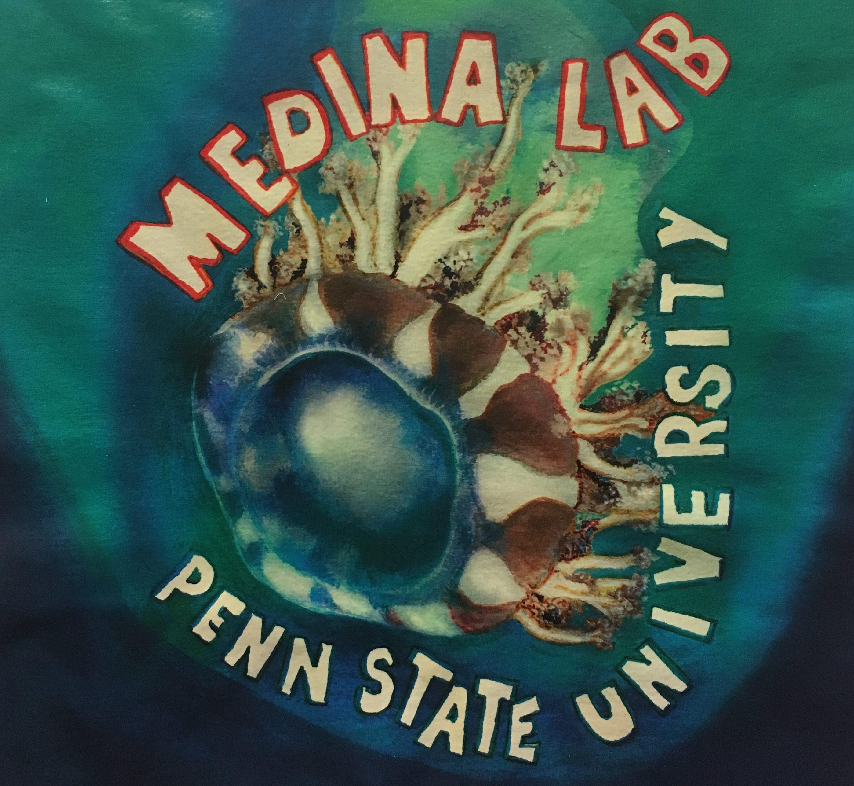 Medina Lab